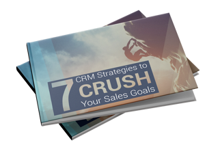 7-CRM-Strategies-Guide